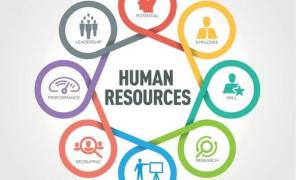 Открыта новая магистерская программа «Управление человеческим капиталом транспортных организаций с использованием цифровых технологий»