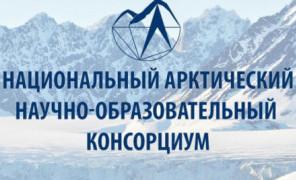 Конкурс студенческих научных работ по арктической тематике